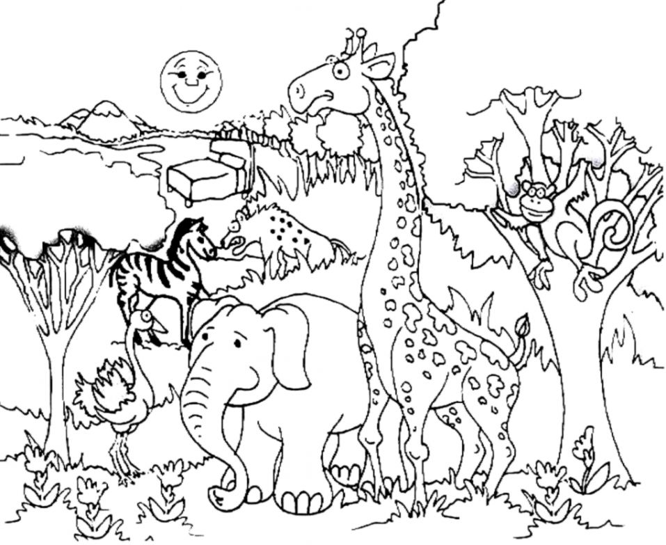 Forest clipart black and white coloring. Forest clipart black and white coloring. Animals amazing wallpapers