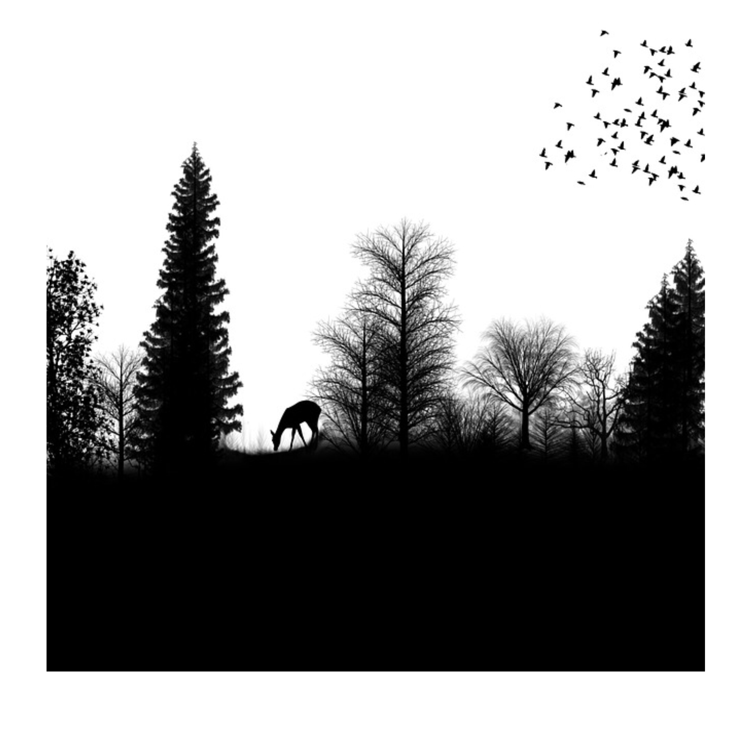 forest clipart black and white transparent