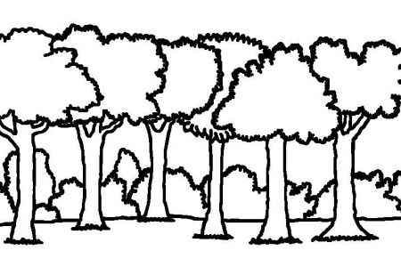 Forest clipart black and white woods. Free download best