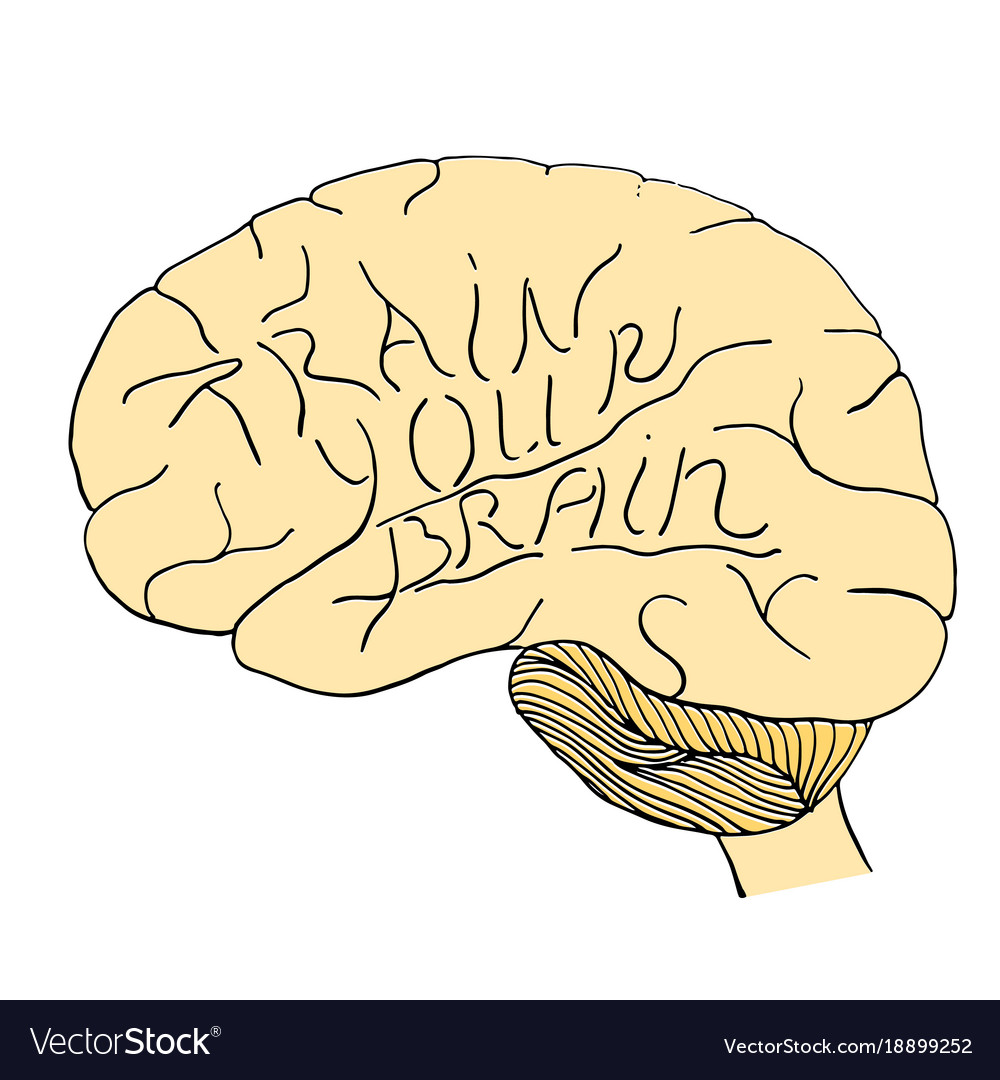 Train your brain hand drawn
