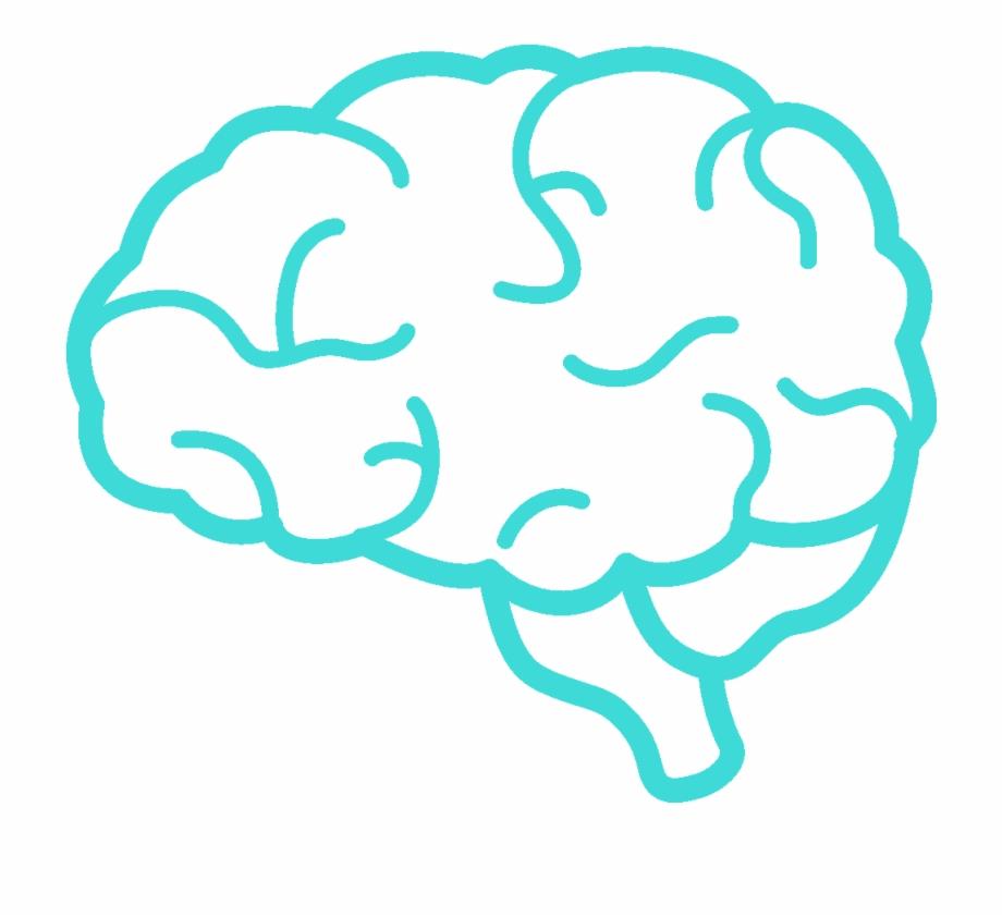 Simple Clip Art Brain , Png Download