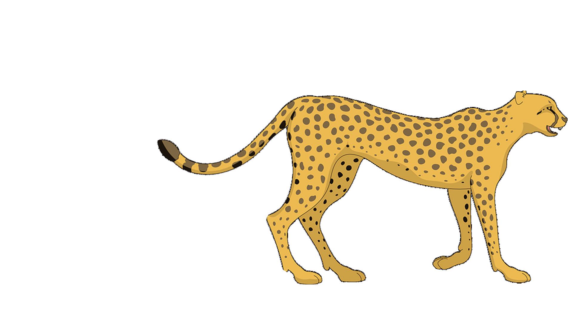Cartoon Cheetah Png Clipart Free Library