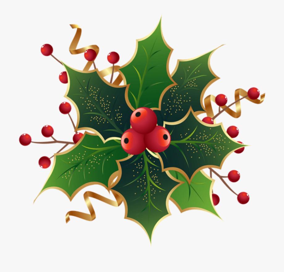 Mistletoe png christmas.