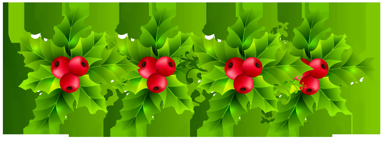 Christmas holly garland.