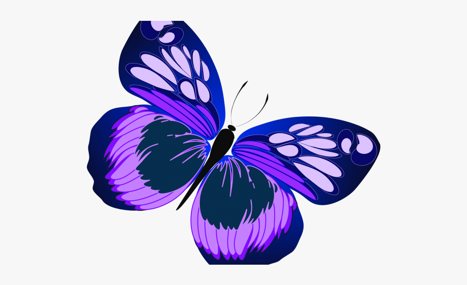 Free clipart butterfly.