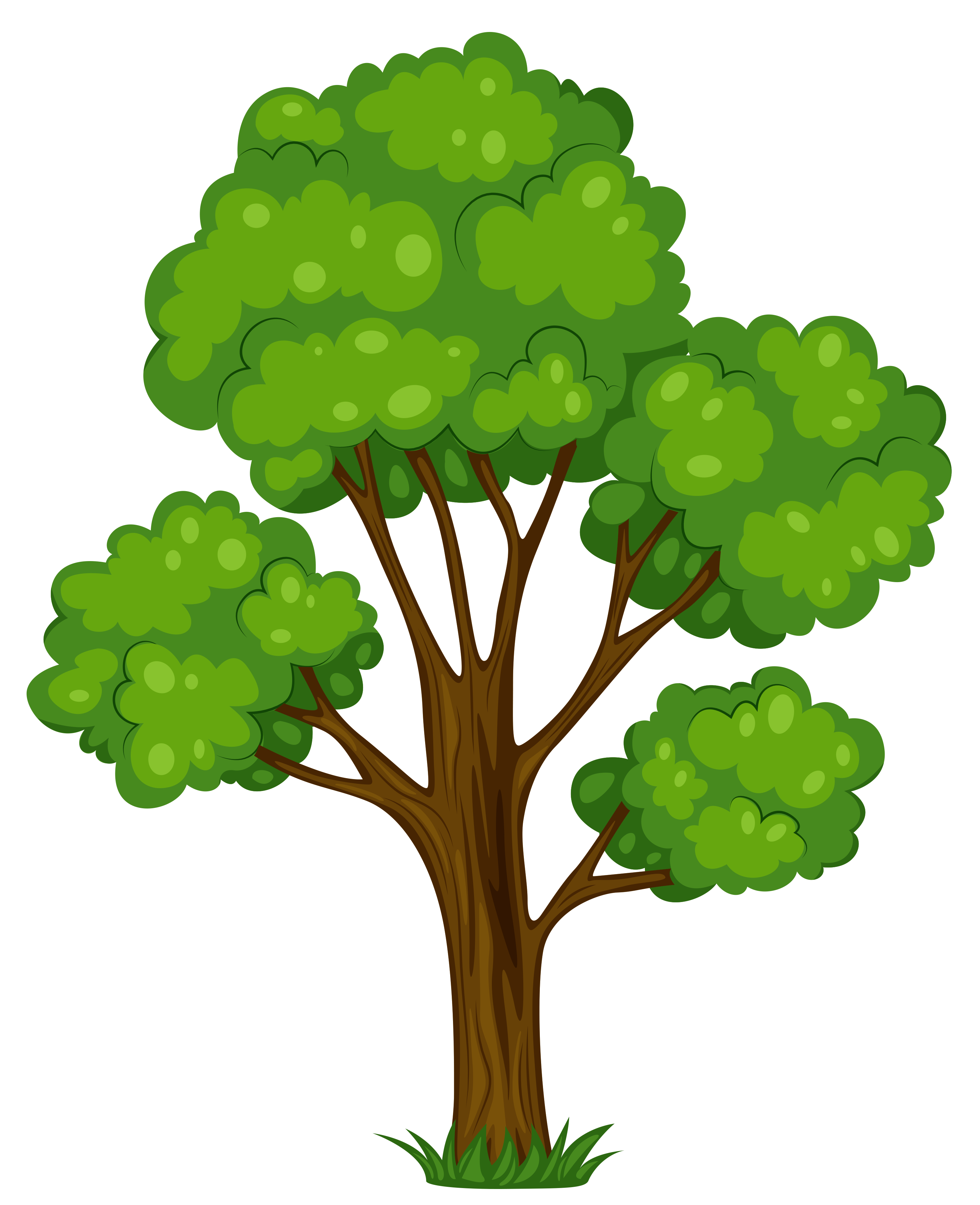 Free tree images.