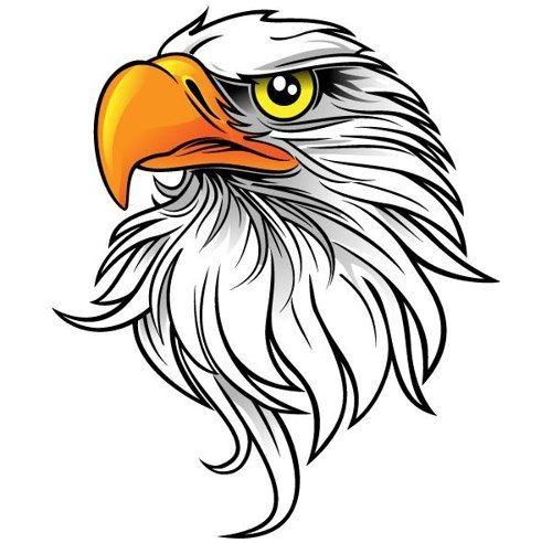 Images eagle mascot.