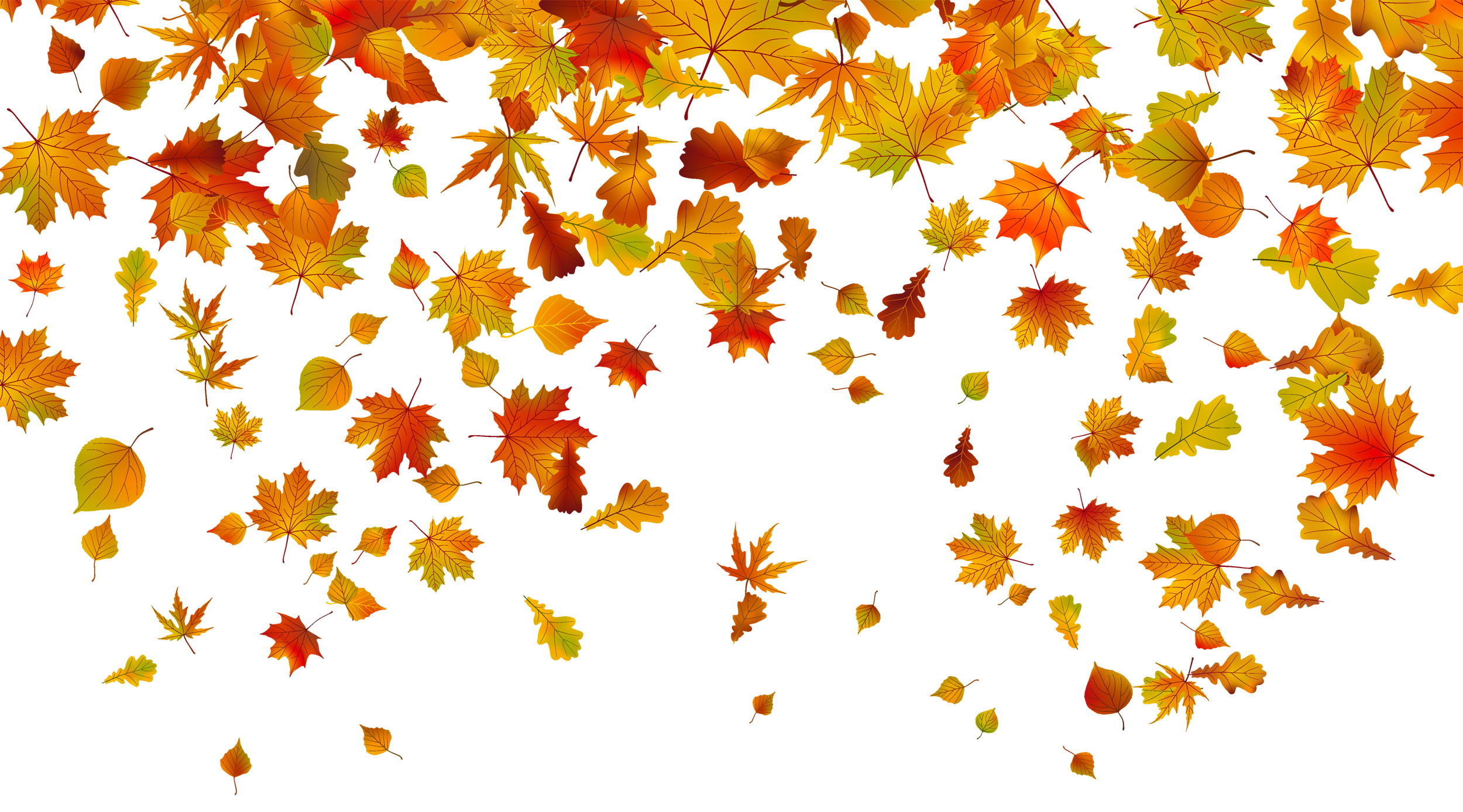 Free fall clipart transparent background.