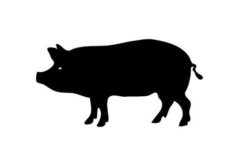 Free pig silhouette.