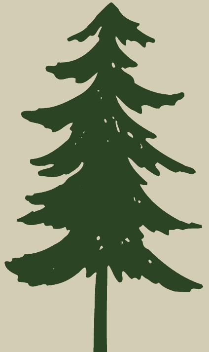 Clip art pine.