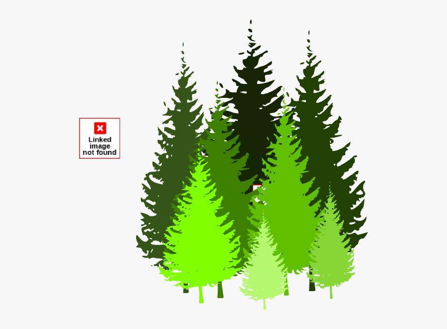 Free pine tree.