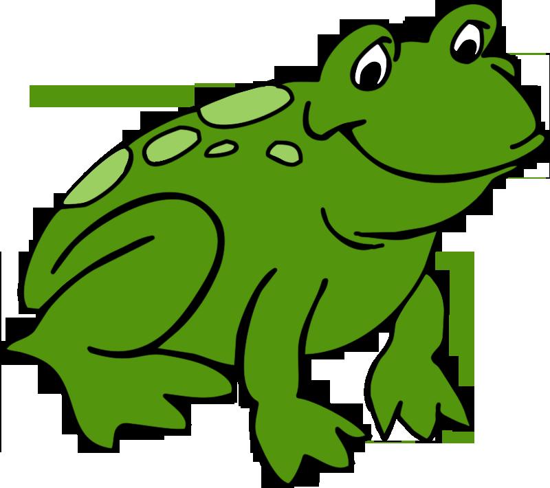 Best cute frog.
