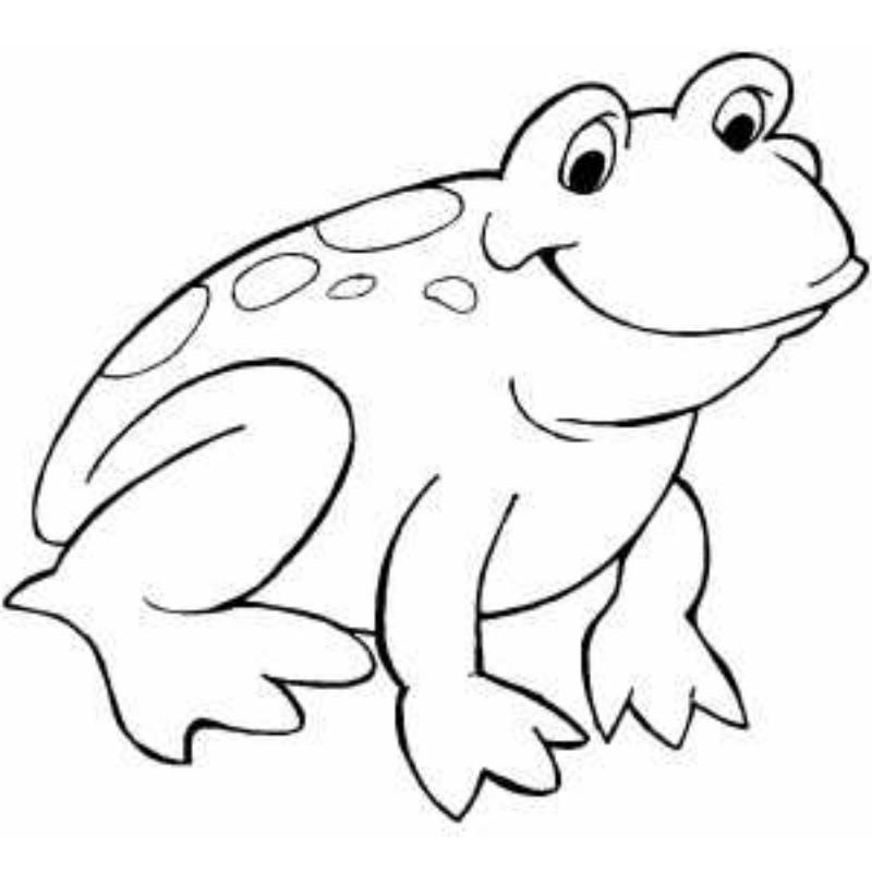 Free outline frog.