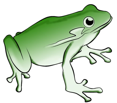 Free pictures frog.