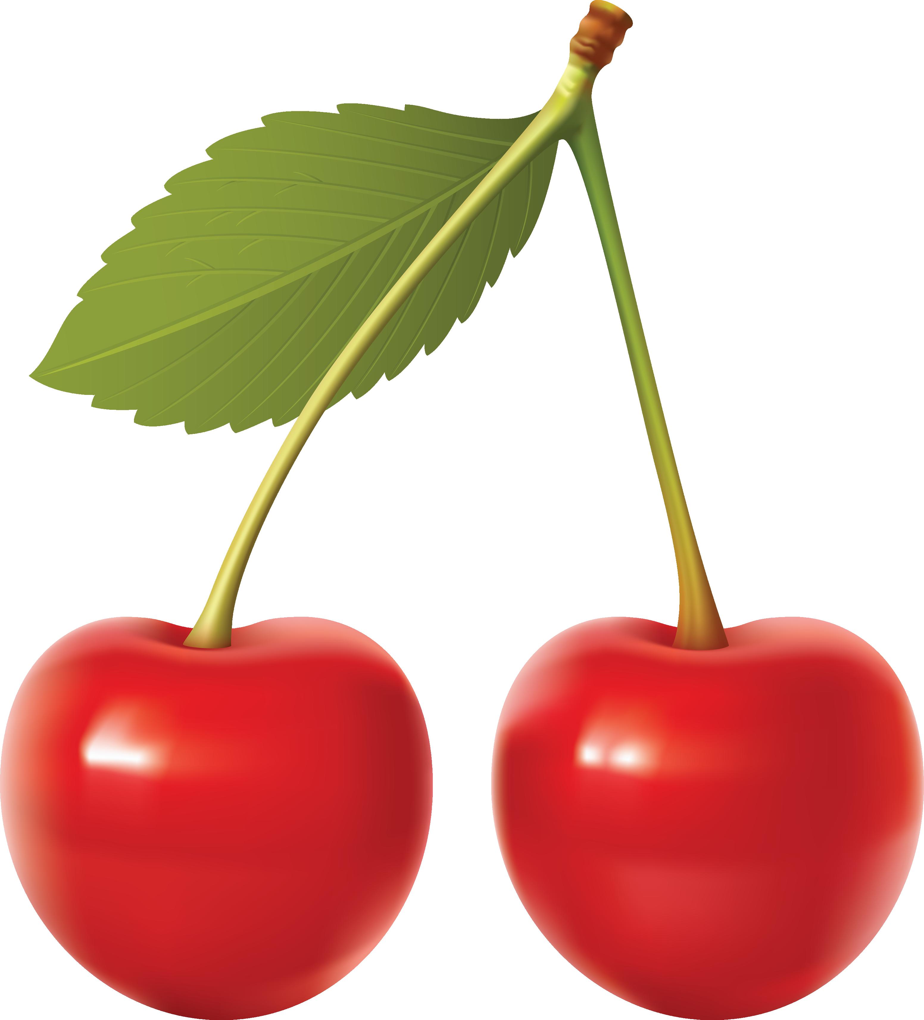 Cartoon cherry clipart.