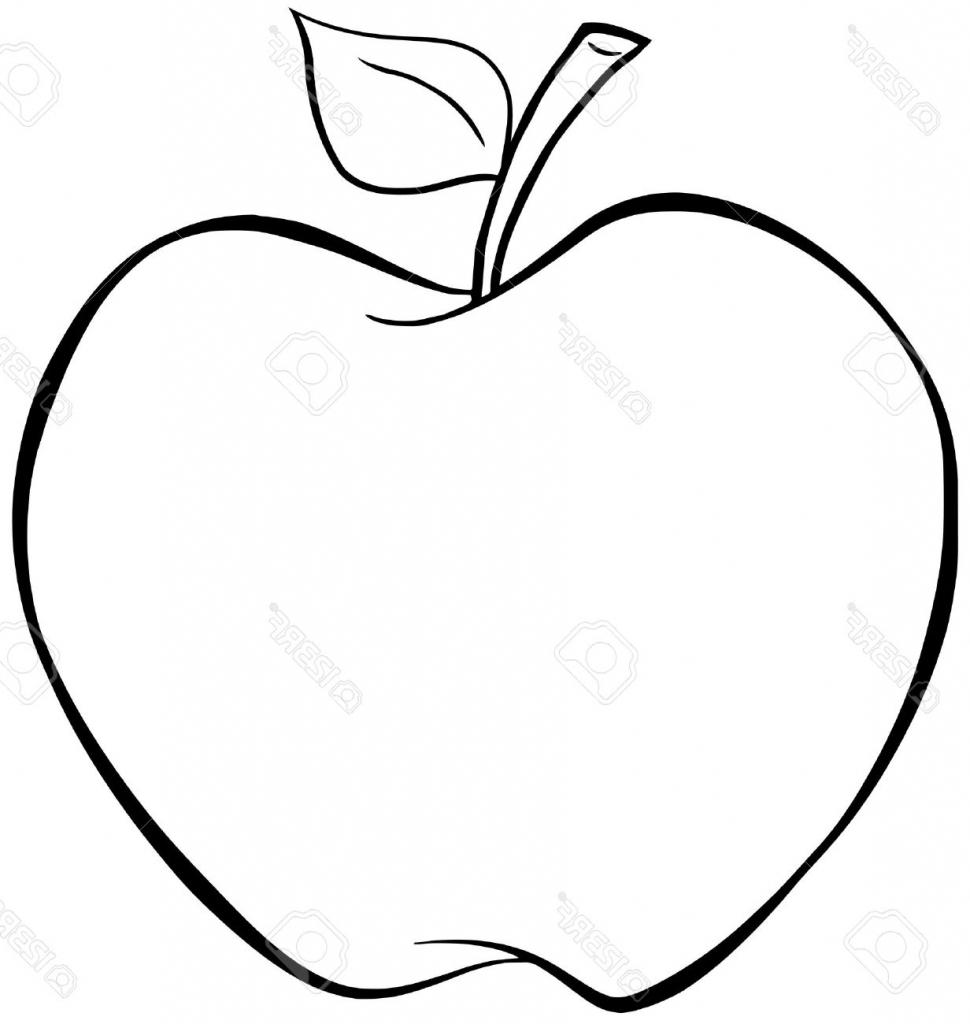 Sketch apple fruit.