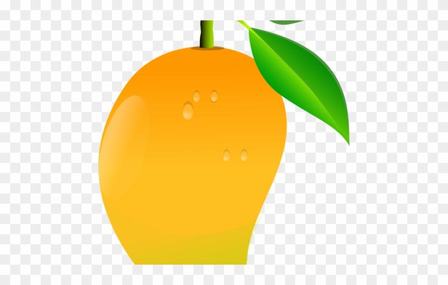 Orange fruit clipart.