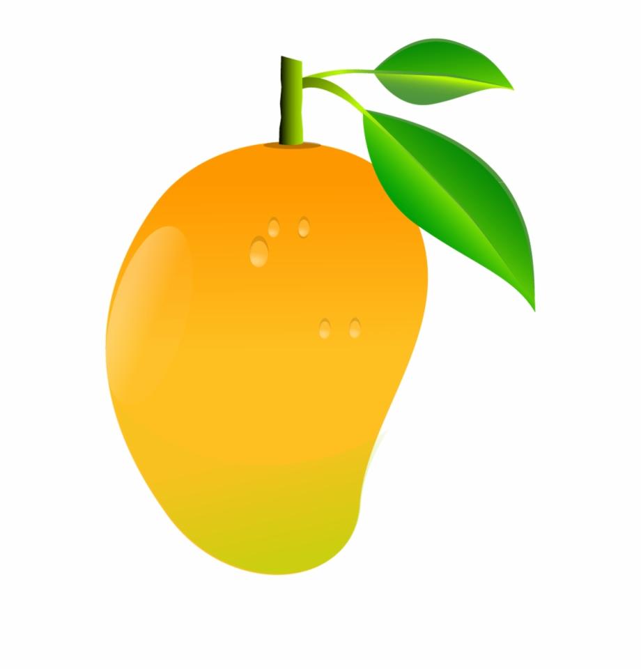 Mango fruit clipart.