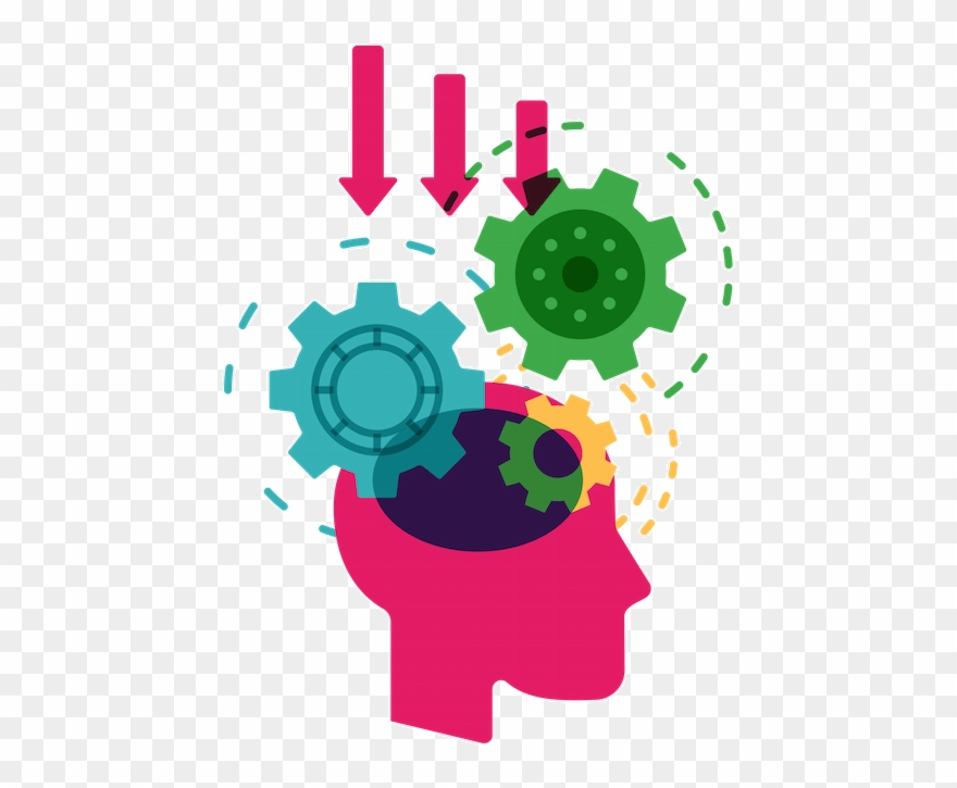 Knowledge clipart brain.