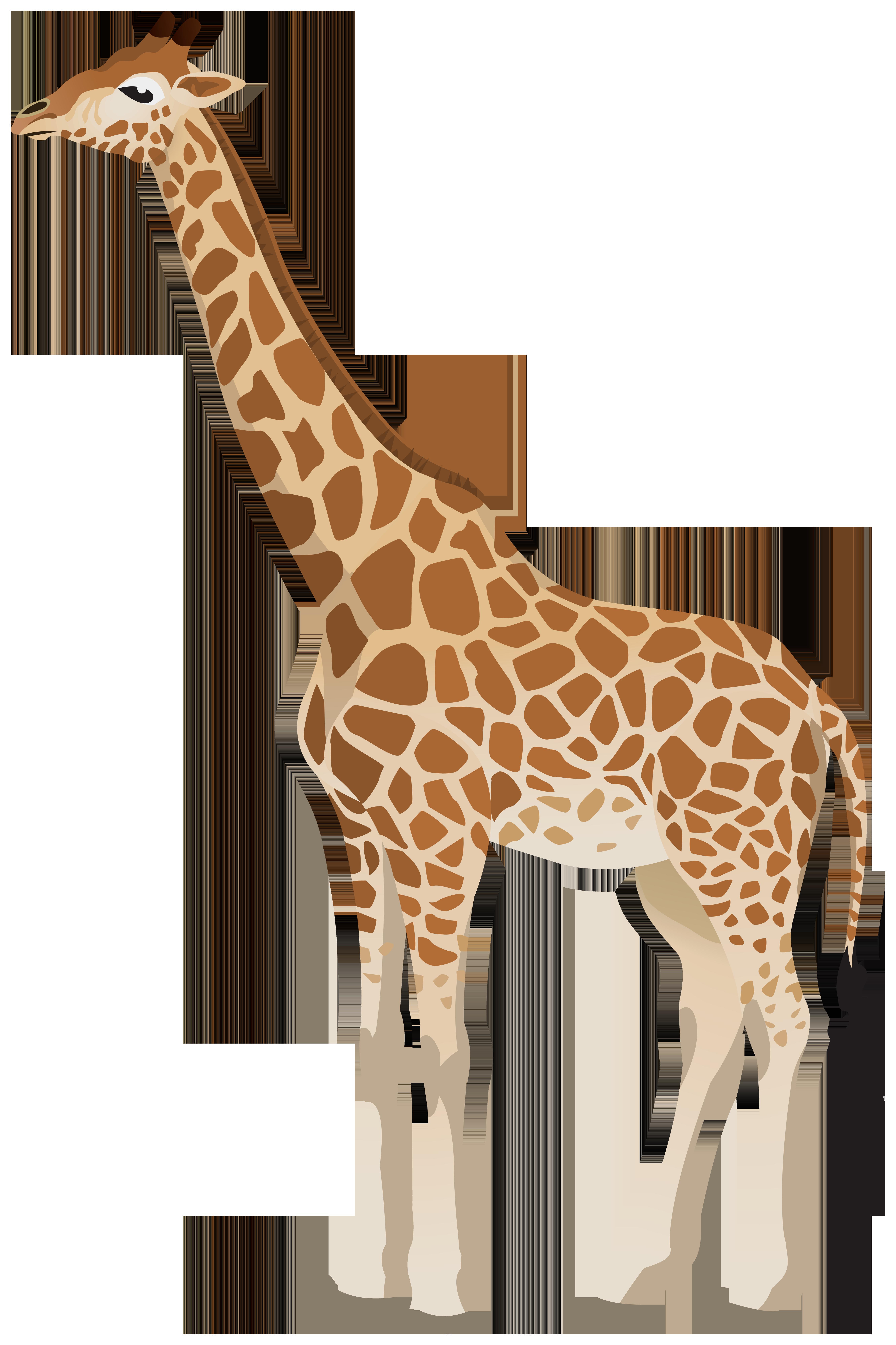 Giraffe Clipart Image