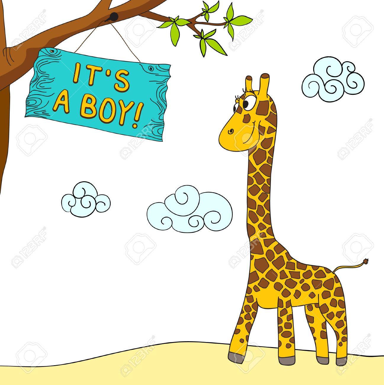 Baby boy giraffe.