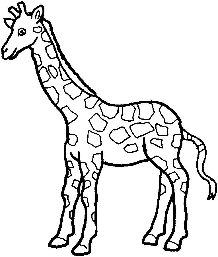 Free outline giraffe.