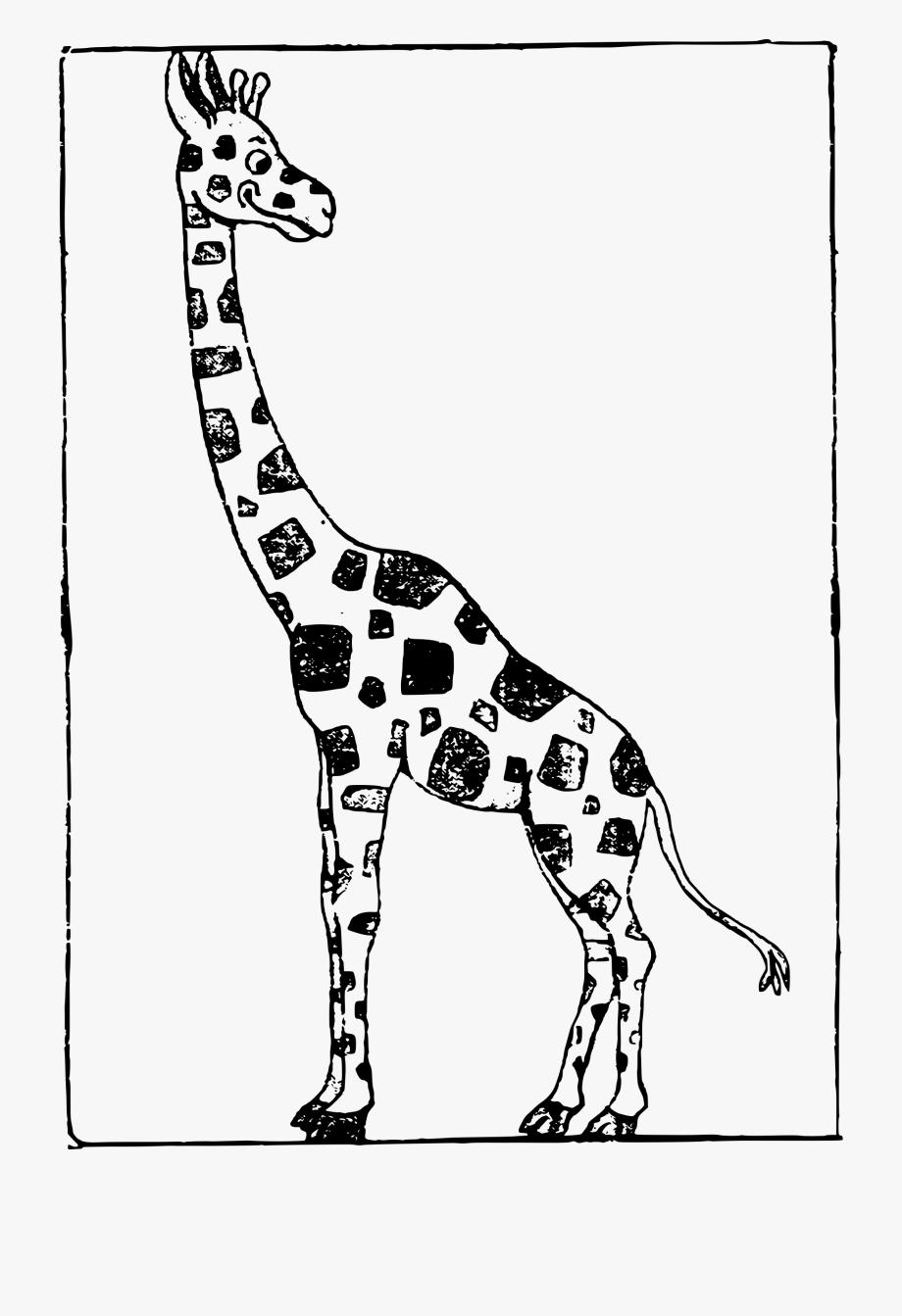 Cartoon giraffe clip.