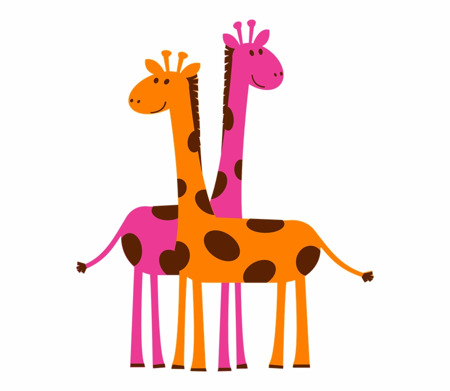 Giraffes orange pink.