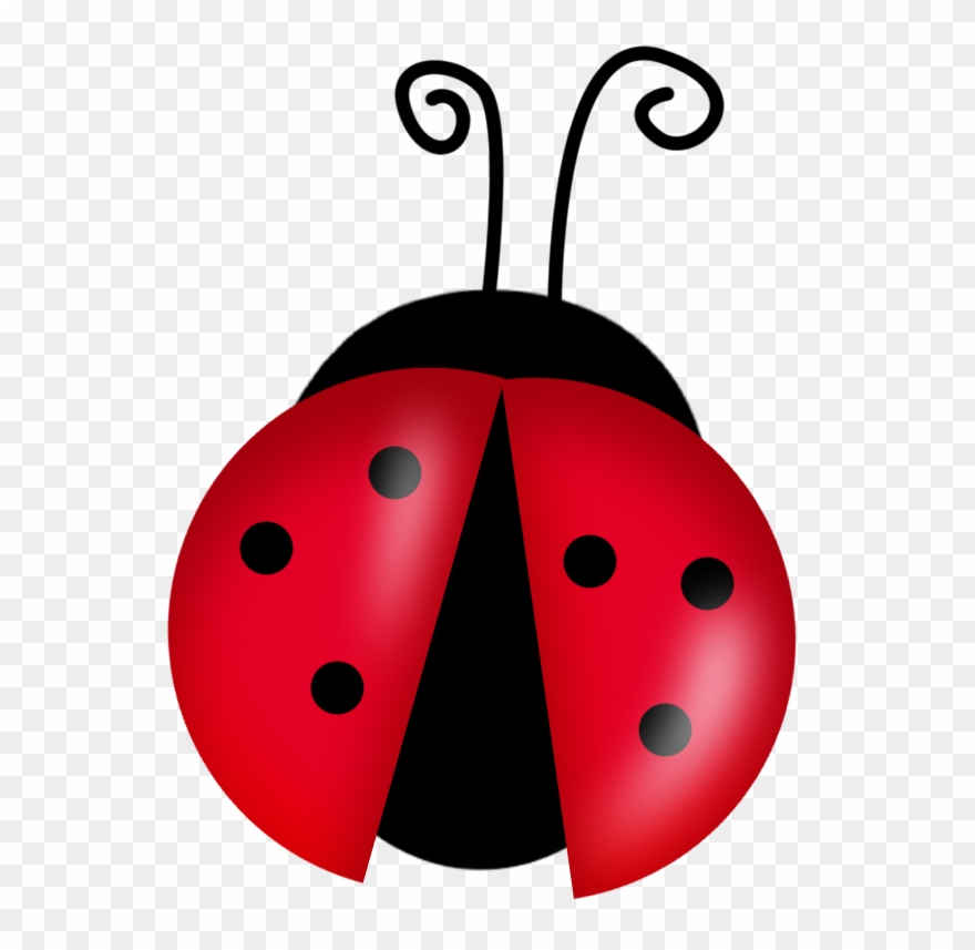 Ladybug clip art cute.