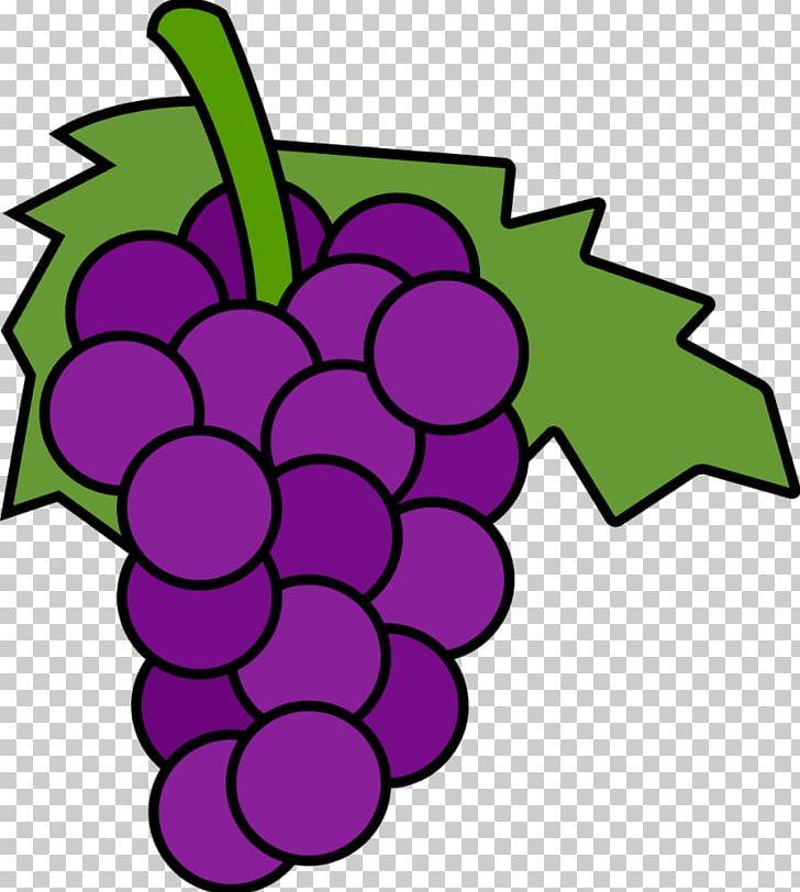 Common grape vine.