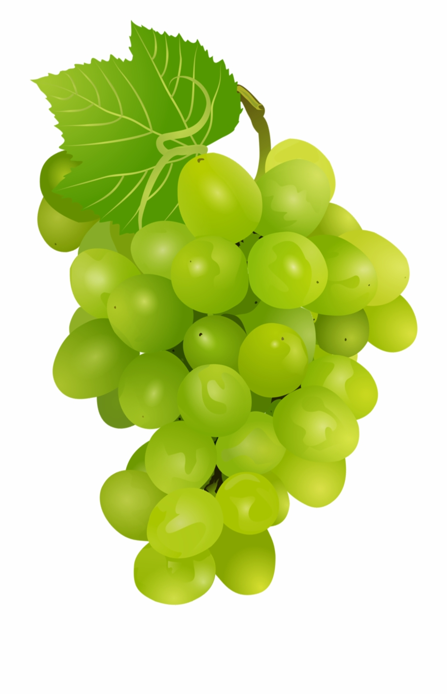 Grapes Clipart, Transparent Png Download For Free