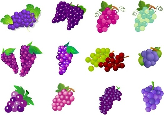 Grape free vector download