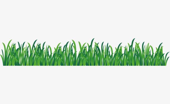 Cute grass png.