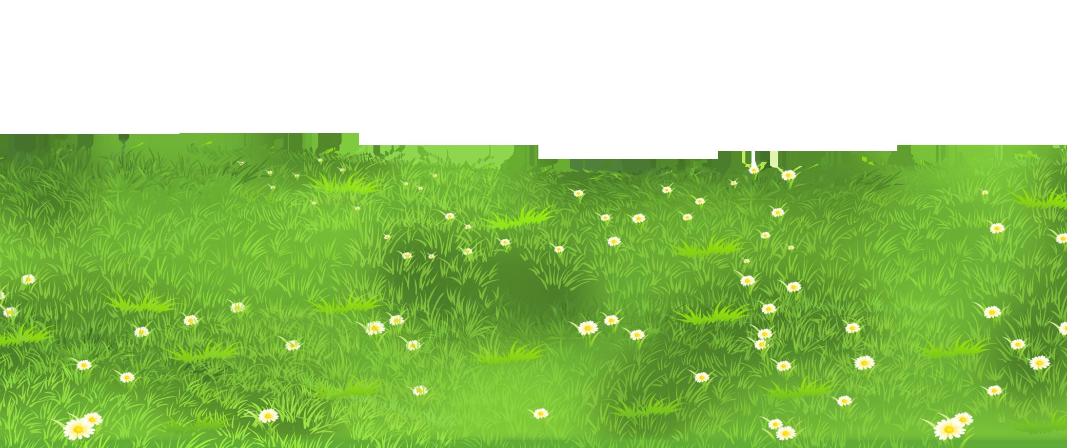 Grass ground with.