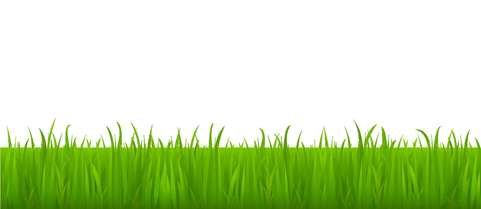 Lawn desktop wallpaper.