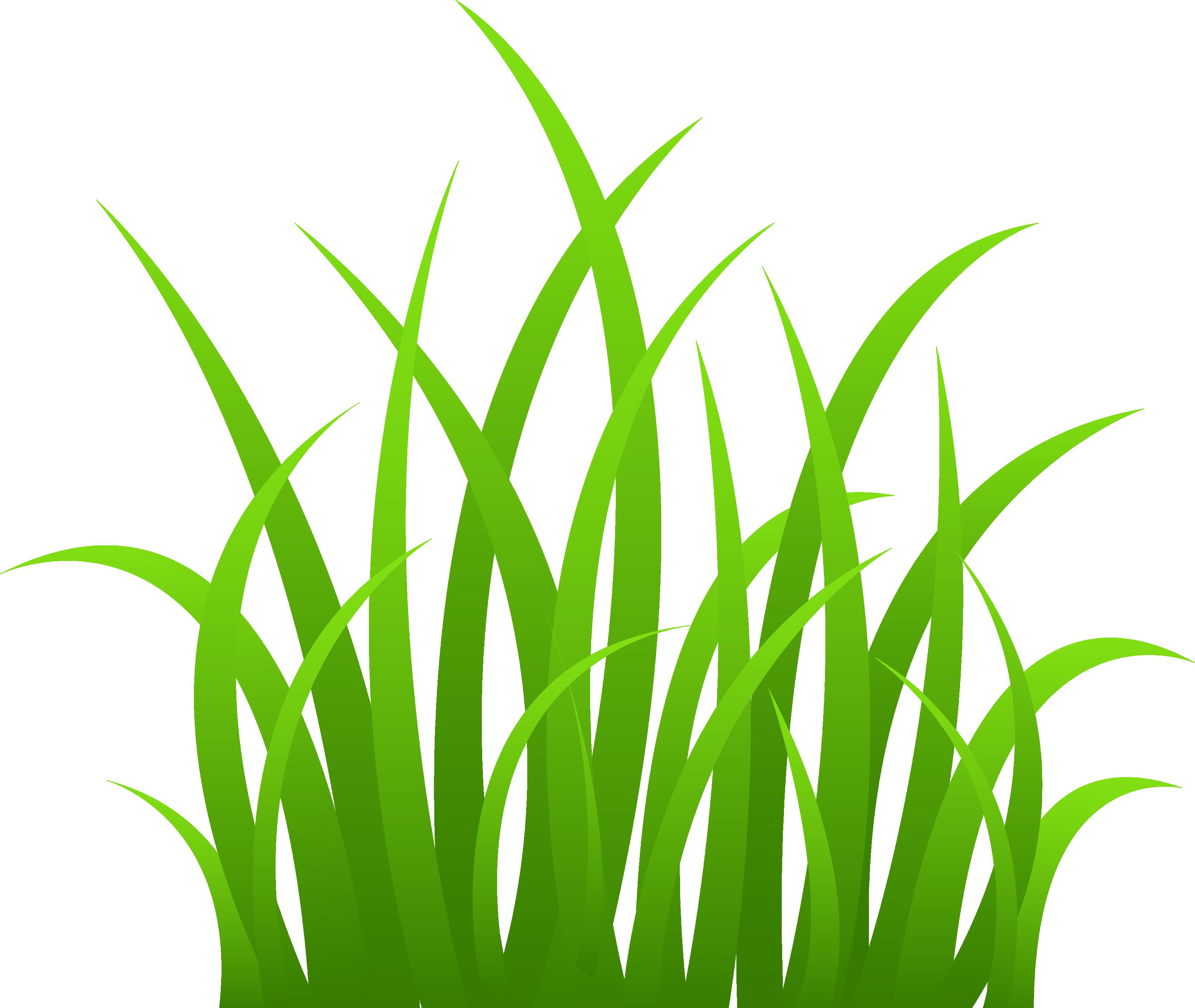 Grass clipart translucent.