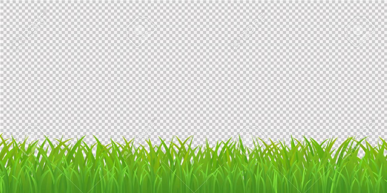 Green grass border.