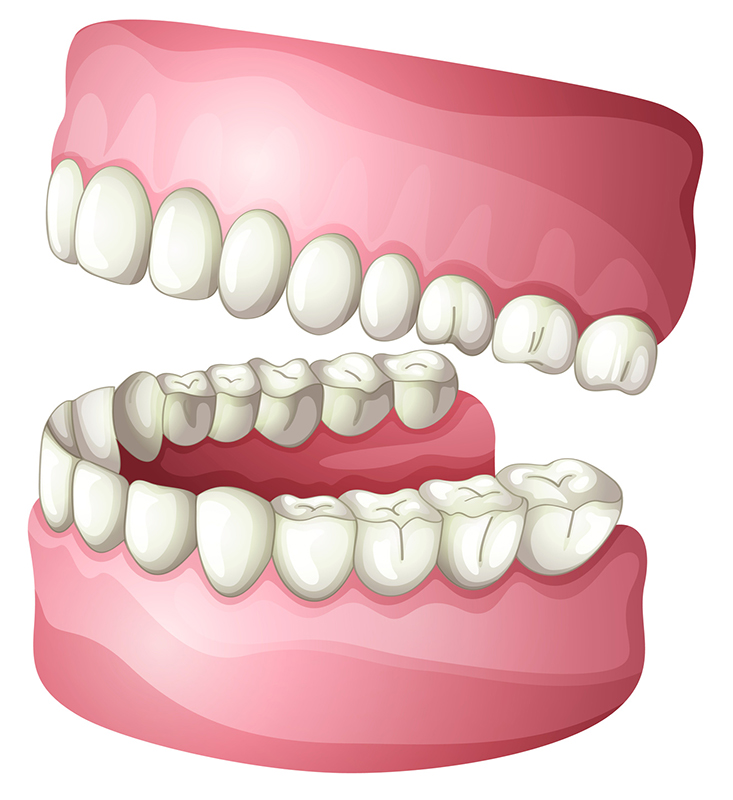 Dentist in Clearwater, FL