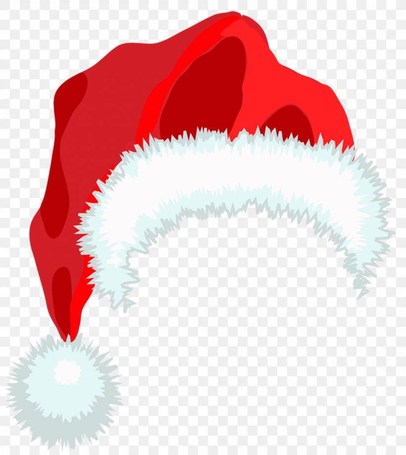 Santa claus hat.