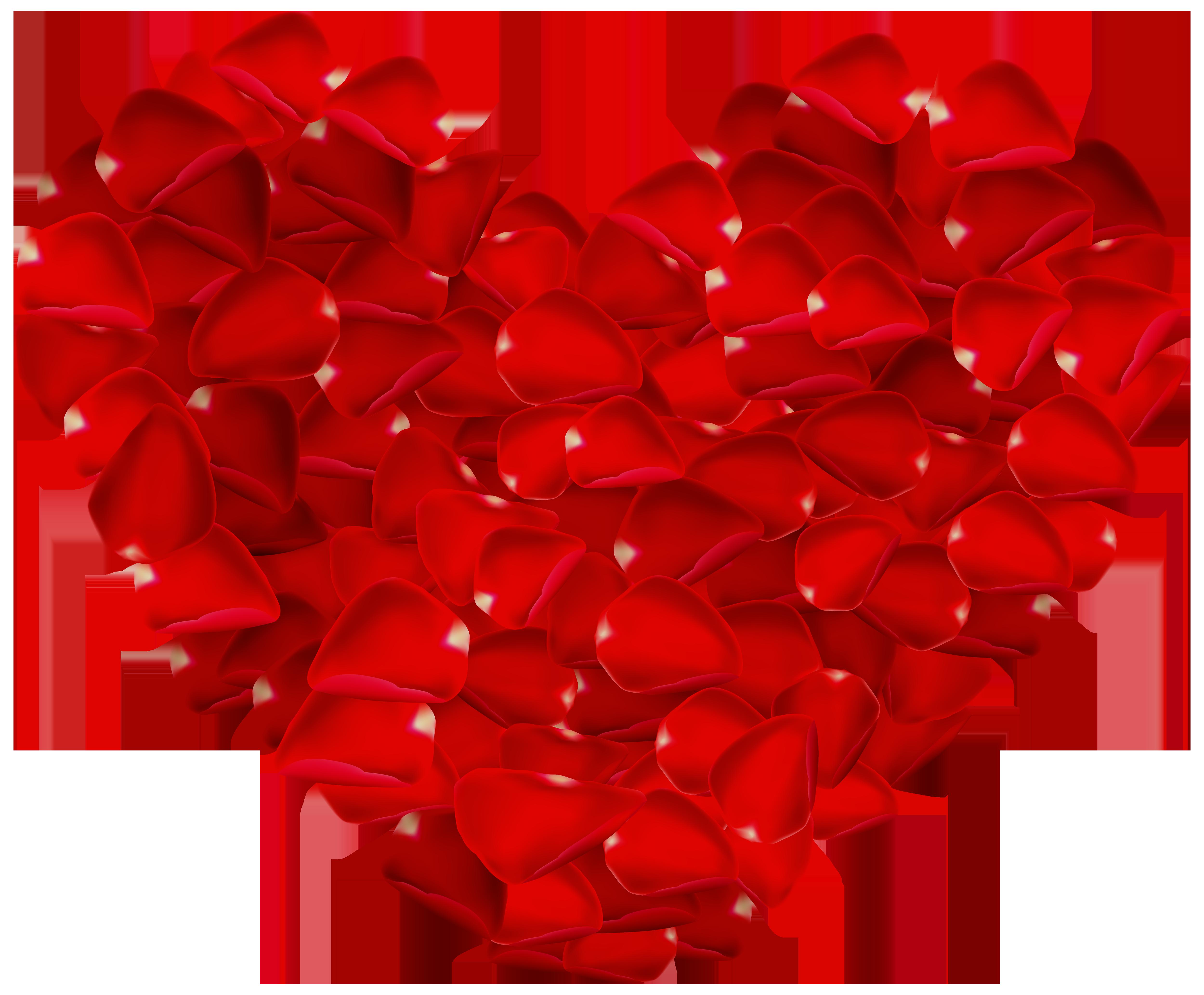 Rose petals heart.