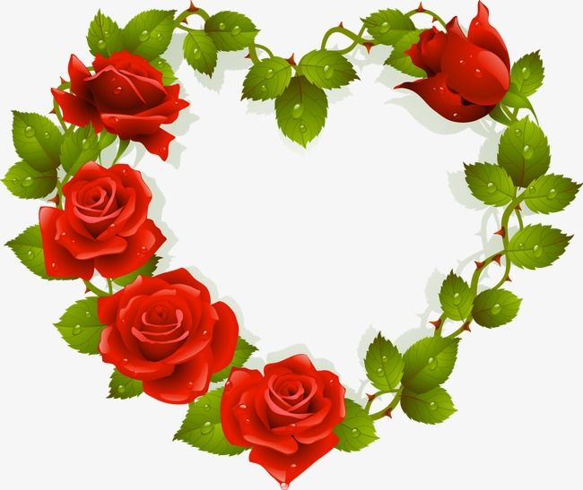 Heart Shaped Roses, Wreath, Red Roses PNG and Vector with
