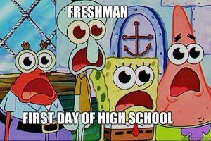 High school freshman.