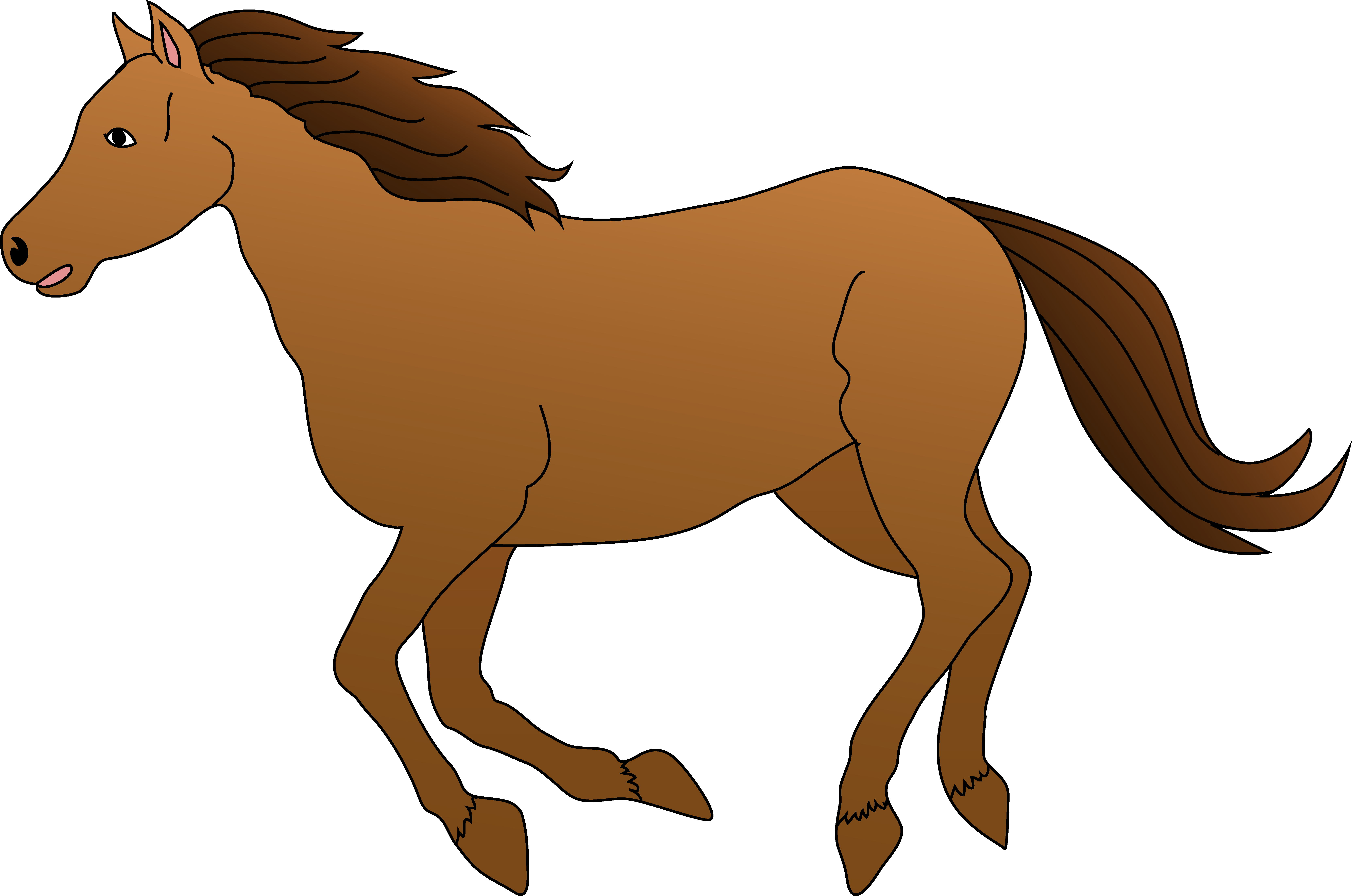 Brown horse galloping.