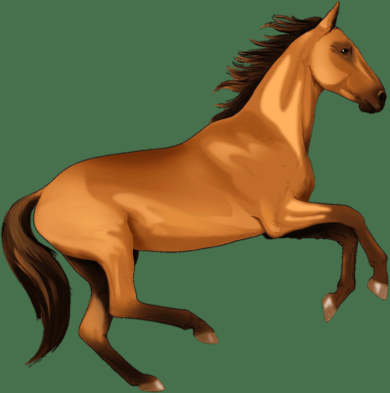 Akhalteke horse clipart.
