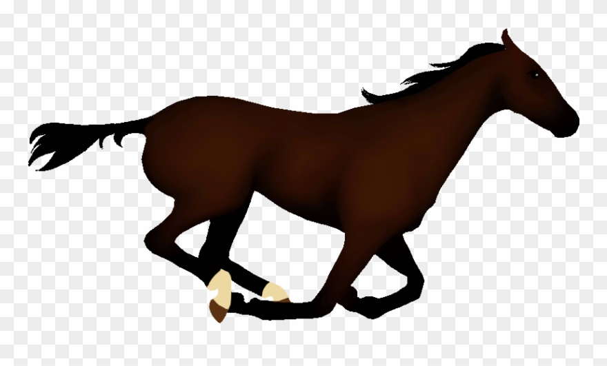 Horse clipart animated.
