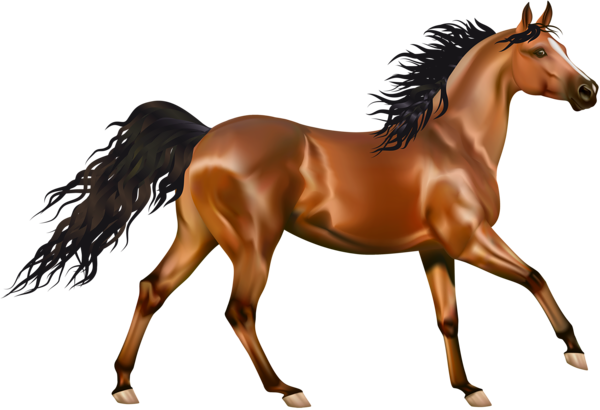 Brown horse clipart.