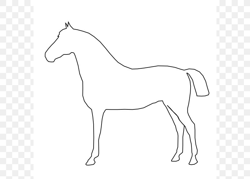 Tennessee walking horse.