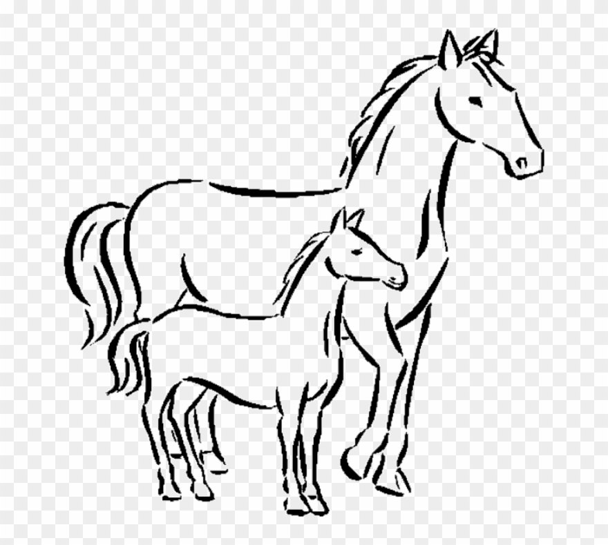 Horse draw small.