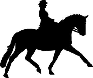 Dressage compete horse.