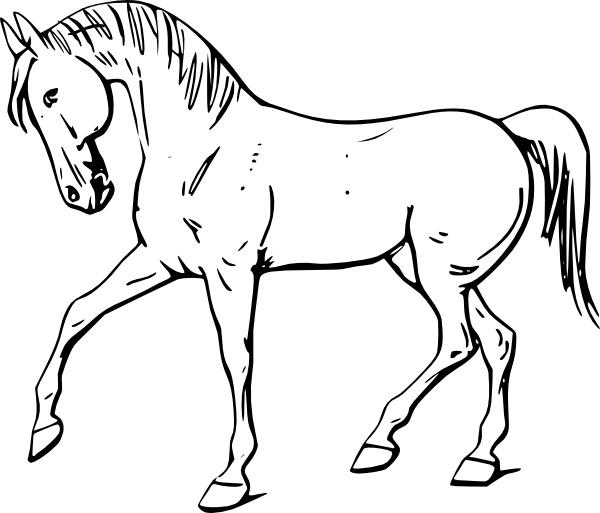 Walking horse outline.